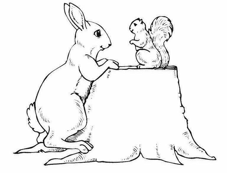 Раскраска белочка и зайчик на vipraskraski.ru