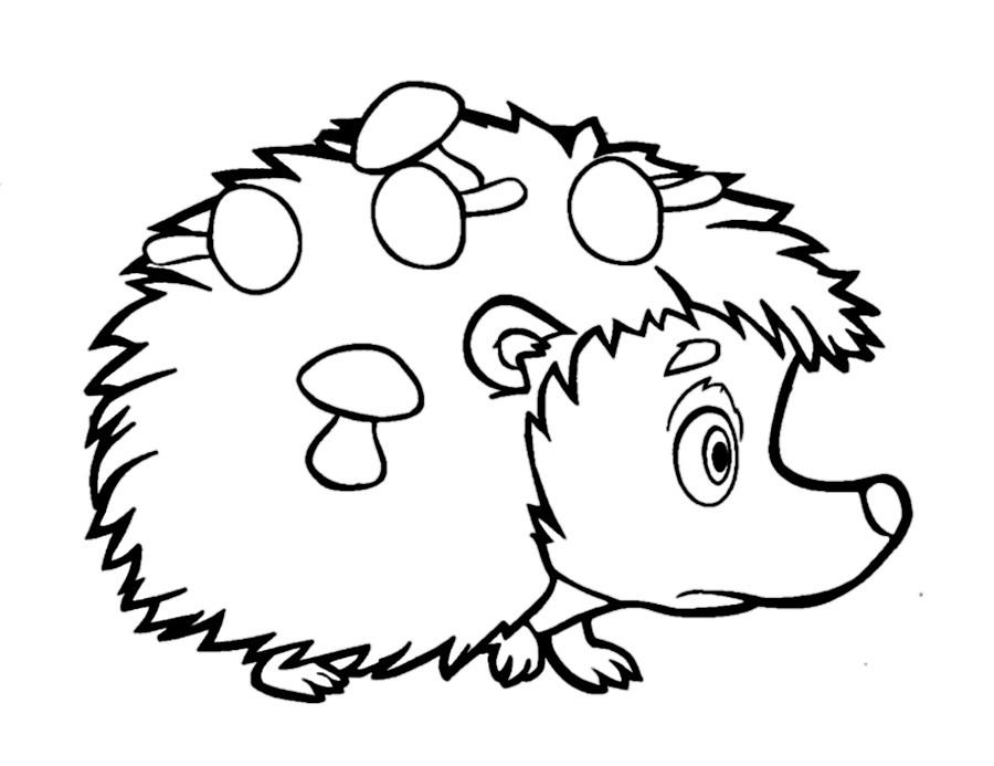 Раскраска ежик из мультика Маша и Медведь на vipraskraski.ru
