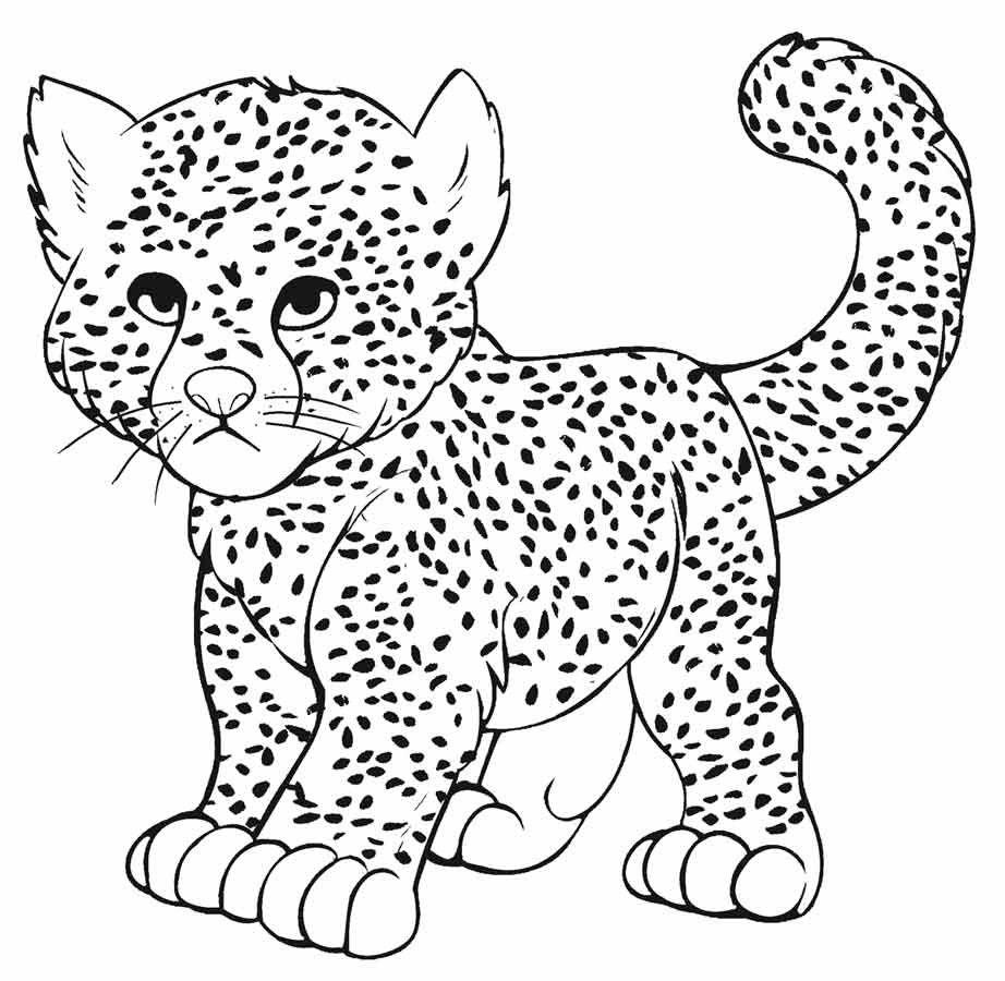 Раскраска леопард детеныш на vipraskraski.ru